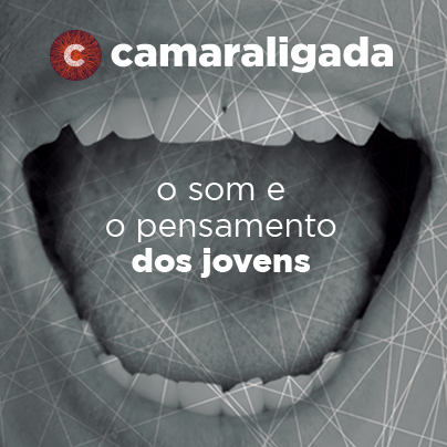 Imagens_Mural_Facebook_CamaraLigada_2013_02